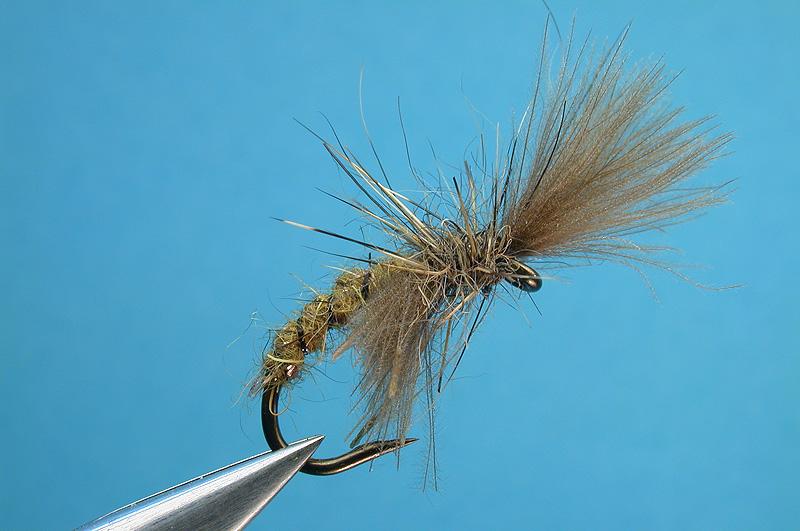 http://www.flytierspage.com/hweilenmann/shuttlecock_caddis.jpg